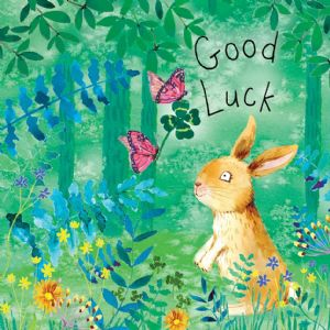 FIZ71  Good Luck Card Rabbit